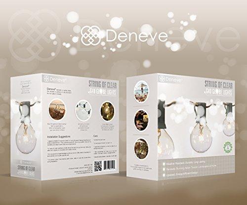 Deneve G40 String Lights with 25 Clear Globe Bulbs - Green New eBay