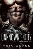 Best unknown Ever Books - Unknown Entity: M/M Non Shifter MPreg Romance Review