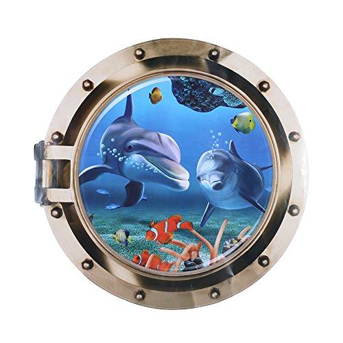 Underwater Window - 8