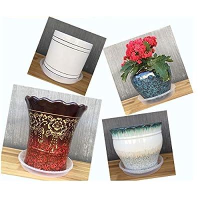D-Worhty 10 Inch 12 inch Round Clear Vinyl Plant Pot Saucer for Indoor Outdoor Garden Plants Use : Garden & Outdoor