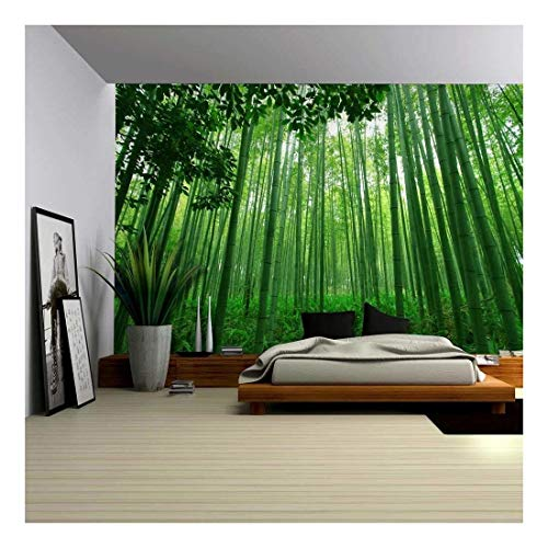 wall26 - Close Up View into a Pure Green Bamboo Forest - Wall Mural, Removable Sticker, Home Decor - 66x96 inches