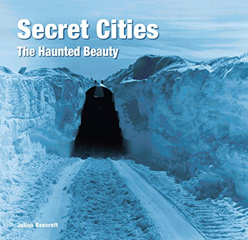 Secret Cities: The Haunted Beauty for sale  Delivered anywhere in Canada