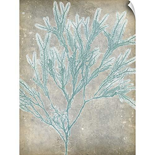 (CANVAS ON DEMAND Jennifer Goldberger Wall Peel Wall Art Print Entitled Spa Seaweed I 12