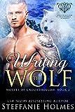 Bargain eBook - Writing the Wolf