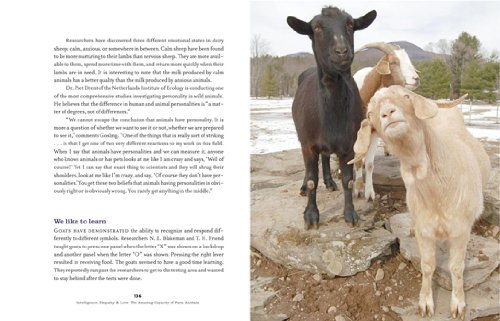 The Inner World of Farm Animals: Their Amazing Social