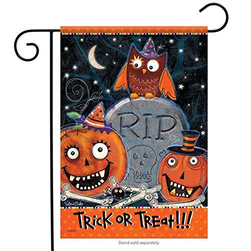 CELYCASY Kooky Spooky Halloween House Flag ()