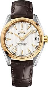 Omega Seamaster Aqua Terra Men's Watch 231.23.39.21.02.002