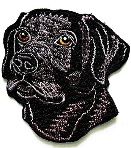 Nipitshop Patches Black Dog Labrador pet Dog Cartoon
