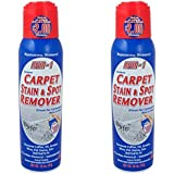 18 Oz. Lifter 1 Carpet Stain & Spot Remover (Pack of 2 Cans)