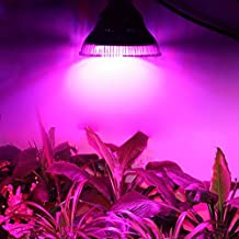 Lvjing High Power 12W E27 Based LED Grow Light Blue + Red for Indoor Flowering Plants and Hydroponics System Plant