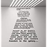 A Long Time Ago in a Galaxy Far Far Away Wall Decal Star Wars Wall Decal Movie Quote Home Theater Decor Gift Vinyl Sticker Print Wall Art Kids Playroom Decor Children Nursery Poster 923