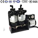Bellow Metering Pump 2DS-2GU2 220V/60HZ Dosing Water Pump 685*2ml/min