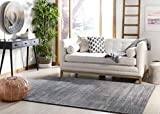 Safavieh Vision Collection VSN606D Modern Ombre