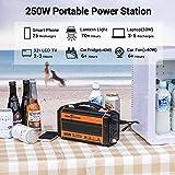 ROCKPALS 250-Watt Portable Generator Rechargeable