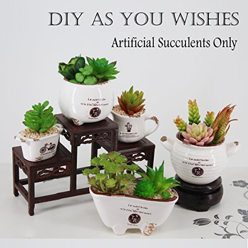 Greatflower 12 Different Kinds of Artificial Succulents for Plants Wall DIY Materials by Greatflower (Image #3)