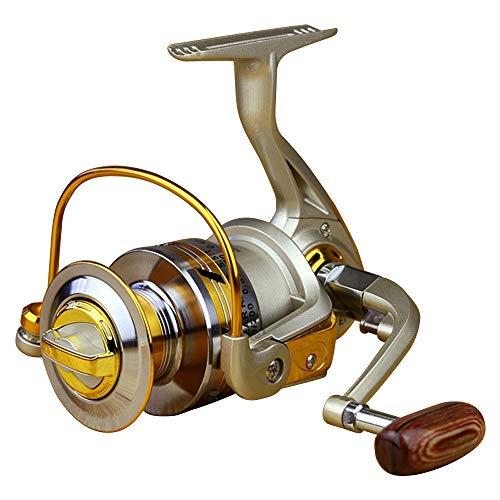 (Fashion outlet 10BB Ball Bearing Saltwater/ Freshwater Fishing Spinning Reel 5.5:1 EF4000)