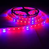 Toogod 16.4ft/5m 5050 Waterproof LED Strip Plant Growing Light Red Blue 4:1 for Aquarium Greenhouse Hydroponic Pant Garden Flowers Veg Grow Light,DC12V
