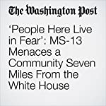 'People Here Live in Fear': MS-13 Menaces a Community Seven Miles From the White House | Michael E. Miller,Dan Morse