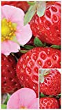 buy Homegrown Strawberry Seeds, 225, Organic Ruby Ann now, new 2019-2018 bestseller, review and Photo, best price $5.02