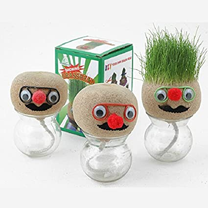 Inovey Mini Diy Magic Grass Plant Pot Head Doll Escritorio Oficina ...