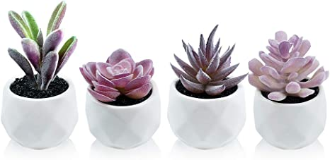 Amazon Com Artificial Plants Desk Fake Succulents Indoor Decor Office Room Decoration Small Tiny Realistic Plants In White Ceramic Potted Kitchen Dining