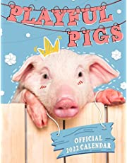 Playful Pigs Calendar 2022: 2022-2023 calendar animals- animal wildlife calendar July 2021 to December 2022 with high quality cute animal photos for animal lover gifts for kids