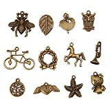 Bingcute 100pcs Mixed type Antique Bronze Charms For Jewelry Making