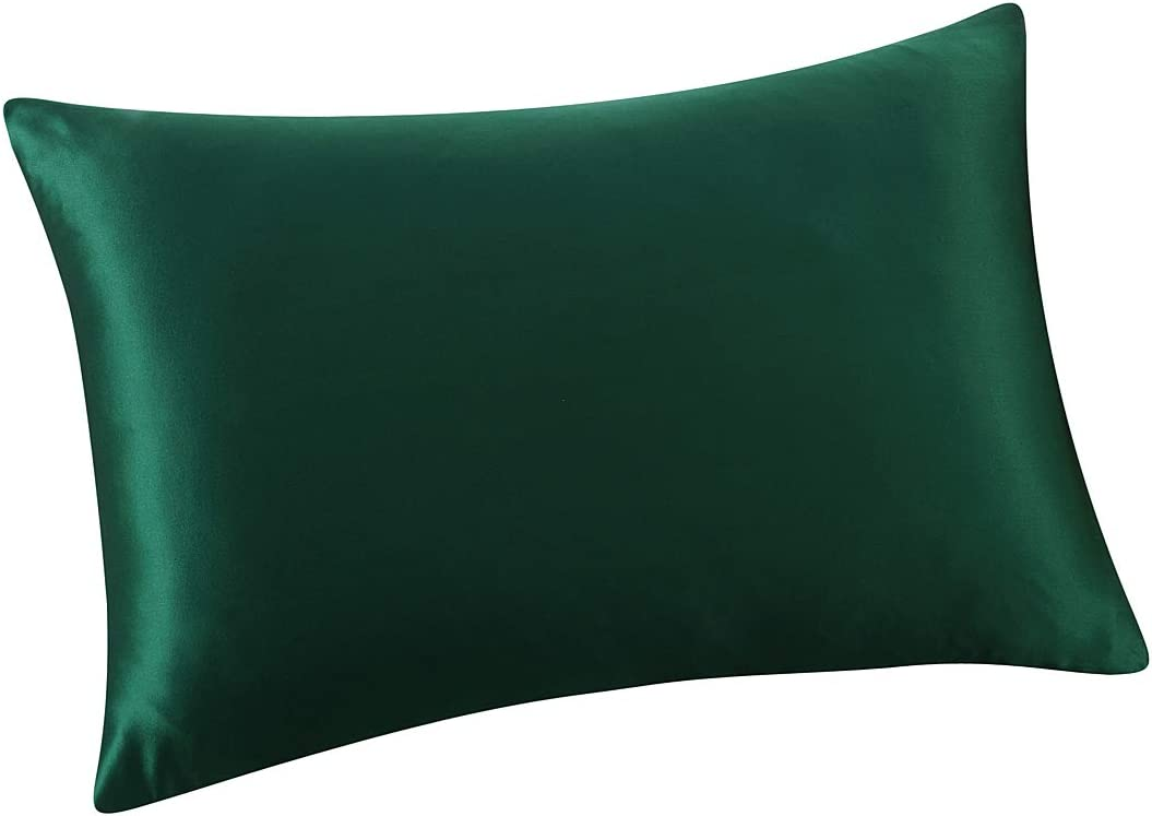 ALASKA BEAR Natural Silk Pillowcase, Hypoallergenic, 19 Momme, 600 Thread Count 100 Percent Mulberry Silk, Queen Size with Hidden Zipper (1, Forest Green)