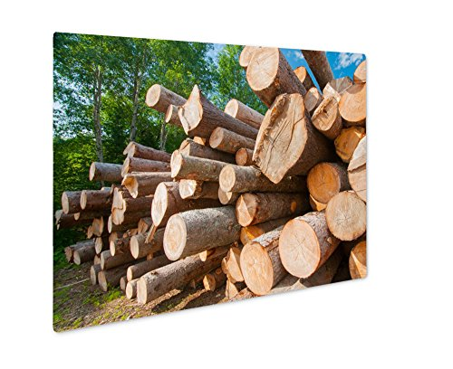 Ashley Giclee Metal Panel Print, Close Up Of Logs Stacked At Lumber Mill In Ontario Canada, Wall Art Decor, Floating Frame, Ready to Hang 16x20, - Mill Ontario