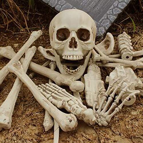 VT BigHome 28 Pieces Broken Bone Horror Skull Plastic Artificial Human Skeletons for Halloween Decoration Celebration Craft Party Supplies -