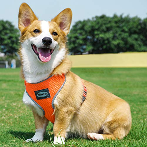 ThinkPet Reflective Breathable Soft Air Mesh No Pull Puppy Dog Vest Harness Neon Orange Neck 16.5-20