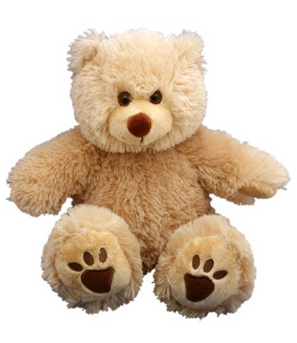 (Recordable Teddy Bear Kit - 15
