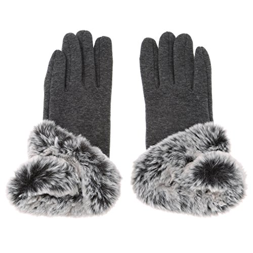 Dolland Womens Touch Screen Winter Gloves Warm Thick Lined Smart Texting Gloves ,Gray