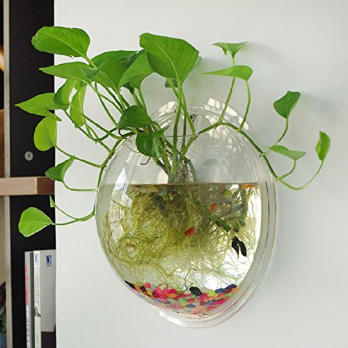 Half Sphere Wall - Diamondo Half-Sphere Acrylic Wall Mounted Hanging Bubble Fish Tank Bowl Aquariums Hydroponic Plant Home Decor (Transparent)