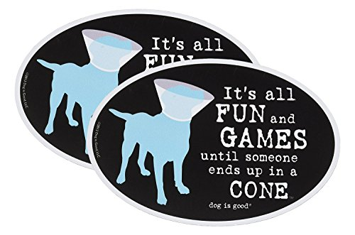 It's All Fun and Games Until Someone Ends Up in a Cone Oval Magnet - 2 Pack - Oval Ovals Cone