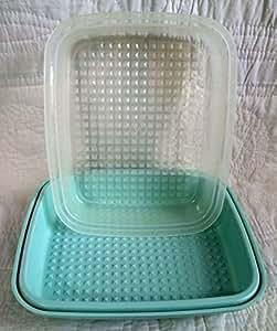 Tupperware Season-Serve Marinating Container - Teal Blue