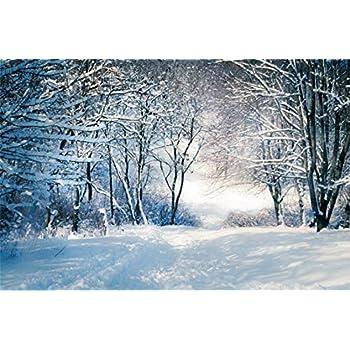 Amazon.com : Leyiyi 10x6.5ft Enchanted Winter Forest