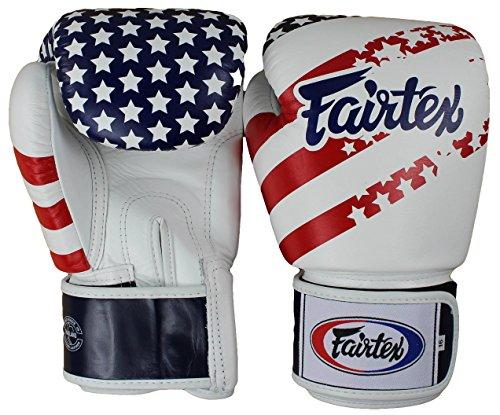 ion USA Thai Style Training Gloves-14oz. ()