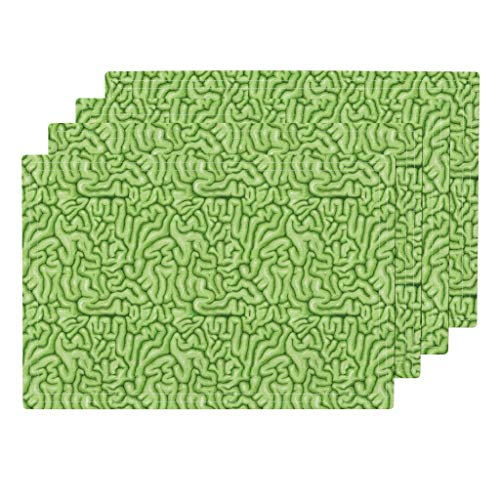 Roostery Brain 4pc Eco Canvas Cloth Placemat Set