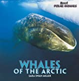 Whales of the Arctic, Sara Swan Miller, 1435831470