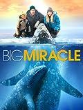 DVD : Big Miracle