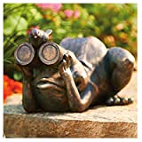 Allen Group Intl AG59040 Lawn Statue, Frog With Binoculars, Copper Fiberglass – Quantity 4 Review