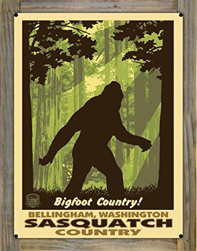 Northwest Art Mall Bellingham Washington Big Foot Shadow Metal Print on Reclaimed Barn Wood by Paul A. Lanquist (18