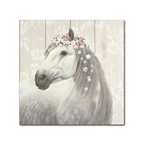 - Spirit Stallion II on wood Square by James Wiens, 14x14-Inch Canvas Wall Art