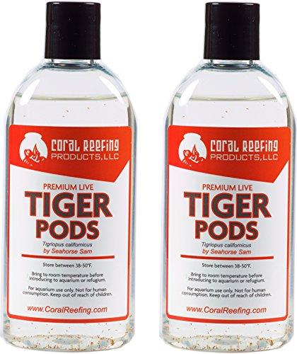2 PCS - 500+ Premium Live Tigriopus Pods (Tigger Pods)