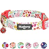 Blueberry Pet 6 Patterns Spring Scent Inspired Garden Floral Dog Collar in Creamy White, Medium, Neck 14.5''-20'', Adjustable Collars for Dogs