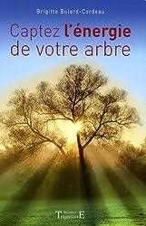 Captez l'énergie de votre arbre