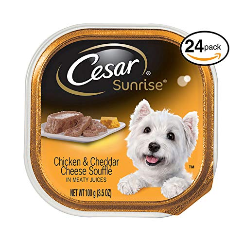 Cesar Sunrise Wet Dog Food Chicken And Cheddar Cheese Souffle Breakfast, (Pack Of 24) 3.5 Oz. Trays