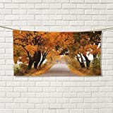smallbeefly Fall Sports Towel Fall Season in Poland Road with Colorful Vibrant Maple Trees Serenity Theme Absorbent Towel Orange Brown Green Size: W 12'' x L 35.6''