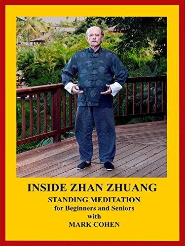 INSIDE ZHAN ZHUANG - Standing Meditation for Beginners and Seniors by